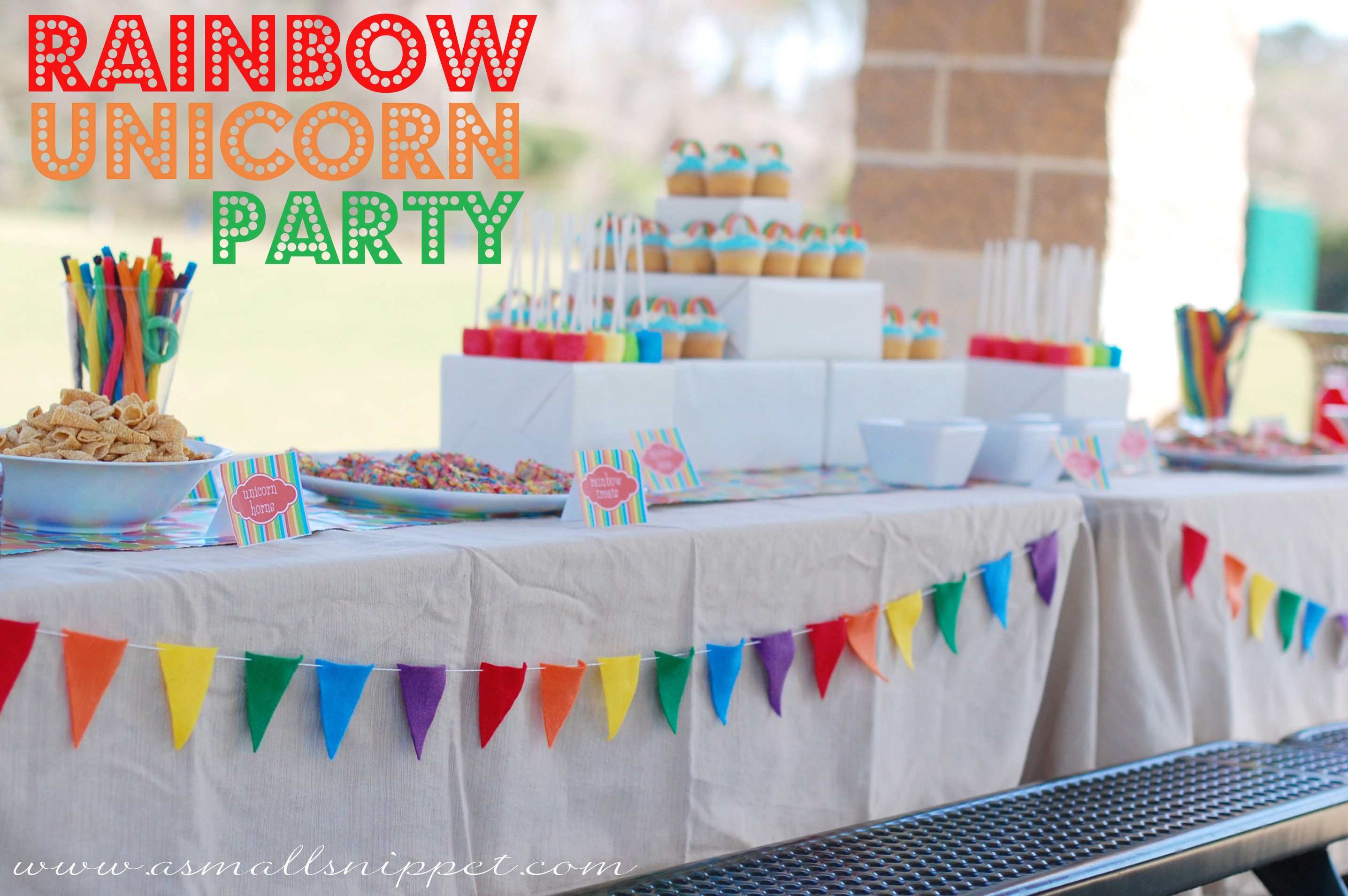Rainbow Unicorn Party A Small Snippet